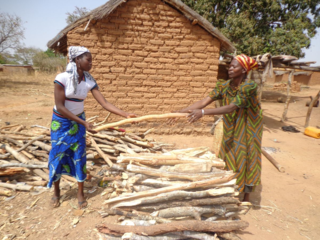 Mali Blog Post 1--Achitan and daughter arranging firewood for sale
